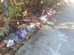 40th Street Litter